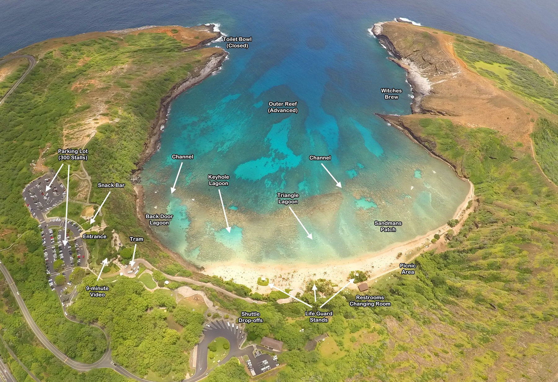 Hanauma Bay State Park Reef Map
